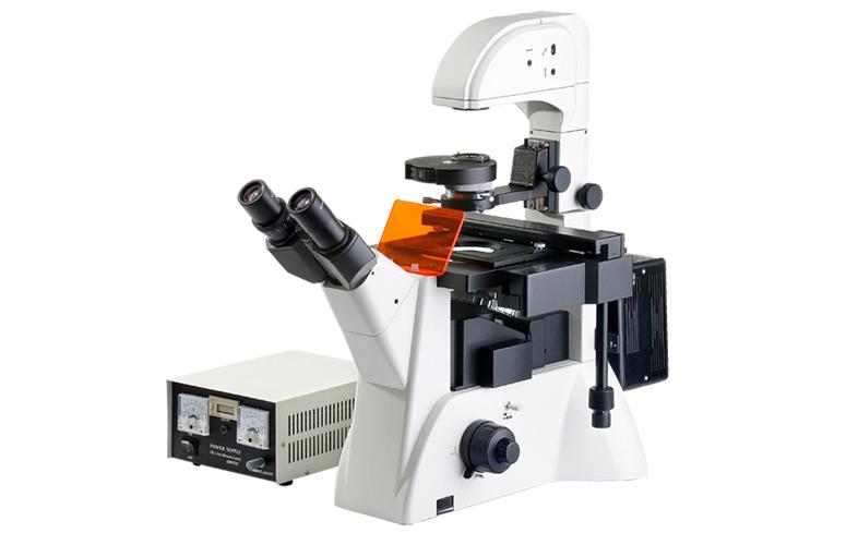 FRD-6C科研级三目倒置荧光显微镜